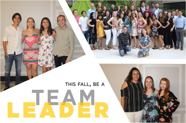 This Fall, be a Team Leader