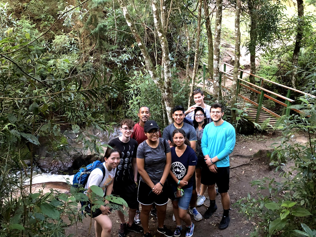 Brazil students in the woods